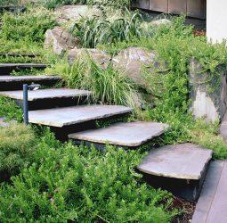 Kew 1